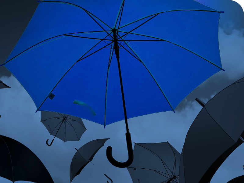 umbrellas falling from the sky